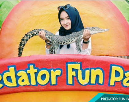 Punya Nyali Tinggi? Cobain Kasih Makan Buaya di Predator Fun Park aja!