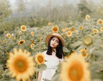 Nggak Perlu Ke Luar Negeri Untuk Foto Bareng Bunga-Bunga Cantik! Di Malang Raya Ada 4 spot ini!