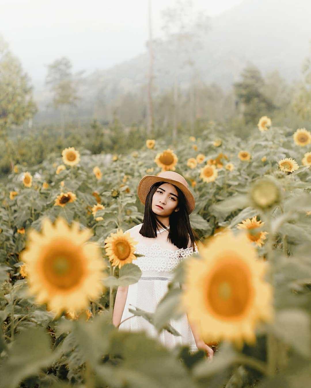 Nggak Perlu Ke Luar Negeri Untuk Foto Bareng Bunga Bunga